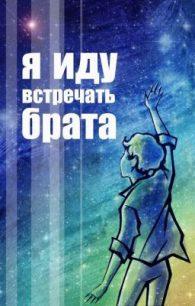 Владислав Крапивин. Я иду встречать брата