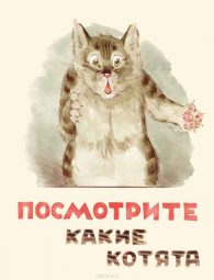 Владимир Матвеев. Посмотрите какие котята