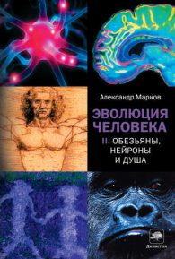 Александр Марков. Эволюция человека. Книга 2. Обезьяны, нейроны и душа