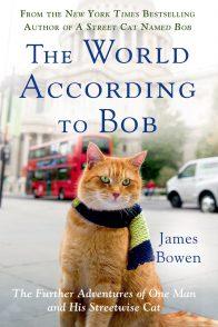 Джеймс Боуэн. Мир глазами кота Боба