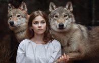 Автор Велимера. Ручной Волк