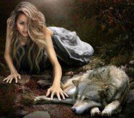 Автор Велимера. Сколько волка ни корми....